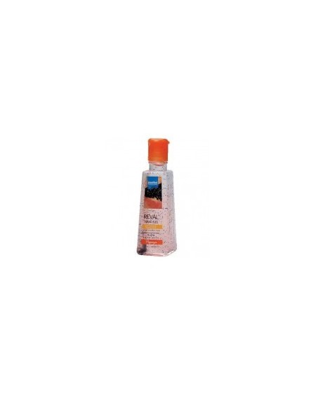 Reval Plus Hand Gel Papaya 100ml